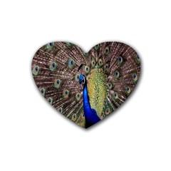 Multi Colored Peacock Rubber Coaster (Heart)