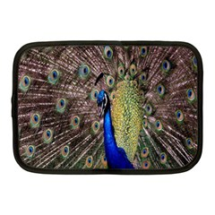 Multi Colored Peacock Netbook Case (medium)