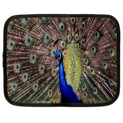 Multi Colored Peacock Netbook Case (Large)