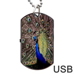 Multi Colored Peacock Dog Tag USB Flash (One Side)
