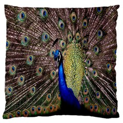Multi Colored Peacock Large Cushion Case (one Side)
