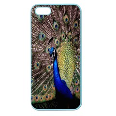Multi Colored Peacock Apple Seamless iPhone 5 Case (Color)