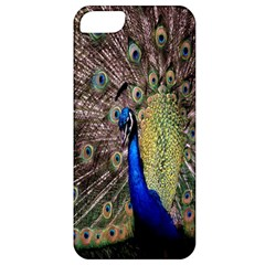 Multi Colored Peacock Apple iPhone 5 Classic Hardshell Case