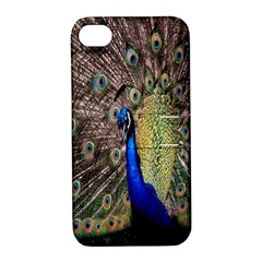 Multi Colored Peacock Apple iPhone 4/4S Hardshell Case with Stand