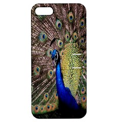 Multi Colored Peacock Apple iPhone 5 Hardshell Case with Stand