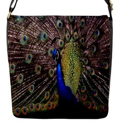 Multi Colored Peacock Flap Messenger Bag (S)