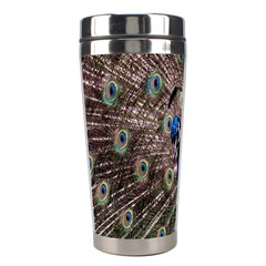 Multi Colored Peacock Stainless Steel Travel Tumblers