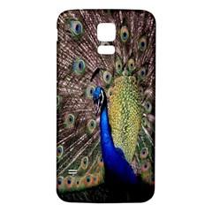 Multi Colored Peacock Samsung Galaxy S5 Back Case (White)