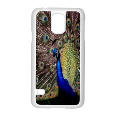 Multi Colored Peacock Samsung Galaxy S5 Case (White)