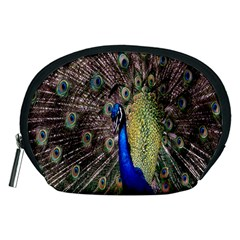 Multi Colored Peacock Accessory Pouches (Medium)