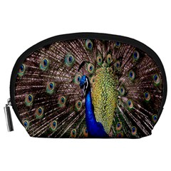 Multi Colored Peacock Accessory Pouches (Large)