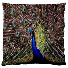 Multi Colored Peacock Large Flano Cushion Case (One Side)