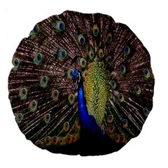 Multi Colored Peacock Large 18  Premium Flano Round Cushions
