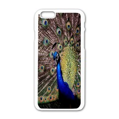 Multi Colored Peacock Apple iPhone 6/6S White Enamel Case