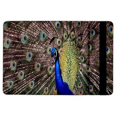 Multi Colored Peacock Ipad Air 2 Flip