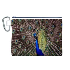 Multi Colored Peacock Canvas Cosmetic Bag (L)
