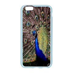 Multi Colored Peacock Apple Seamless iPhone 6/6S Case (Color)