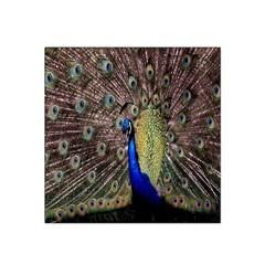 Multi Colored Peacock Satin Bandana Scarf