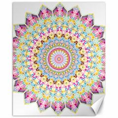 Kaleidoscope Star Love Flower Color Rainbow Canvas 11  x 14