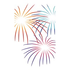 Fireworks Orange Blue Red Pink Purple Shower Curtain 48  x 72  (Small)
