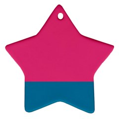 Flag Color Pink Blue Star Ornament (Two Sides)