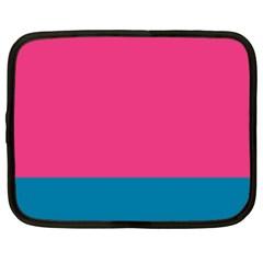 Flag Color Pink Blue Netbook Case (Large)
