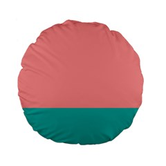 Flag Color Pink Blue Line Standard 15  Premium Flano Round Cushions