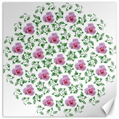 Rose Flower Pink Leaf Green Canvas 12  x 12