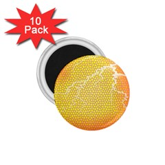 Exotic Backgrounds 1.75  Magnets (10 pack)