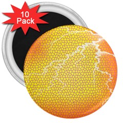 Exotic Backgrounds 3  Magnets (10 pack)