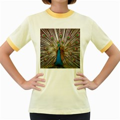 Indian Peacock Plumage Women s Fitted Ringer T-Shirts