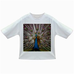 Indian Peacock Plumage Infant/Toddler T-Shirts