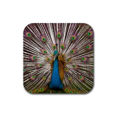 Indian Peacock Plumage Rubber Coaster (square)
