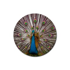 Indian Peacock Plumage Rubber Coaster (Round)