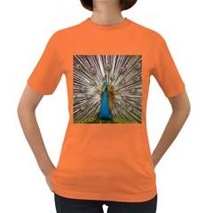 Indian Peacock Plumage Women s Dark T Shirt