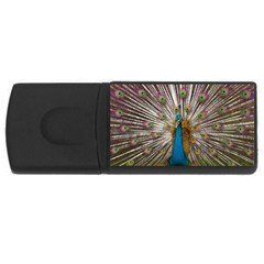Indian Peacock Plumage USB Flash Drive Rectangular (4 GB)