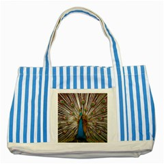 Indian Peacock Plumage Striped Blue Tote Bag