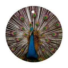 Indian Peacock Plumage Round Ornament (Two Sides)