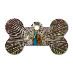 Indian Peacock Plumage Dog Tag Bone (Two Sides)