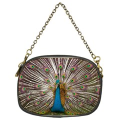 Indian Peacock Plumage Chain Purses (one Side)