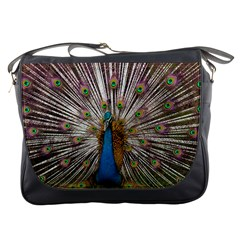 Indian Peacock Plumage Messenger Bags
