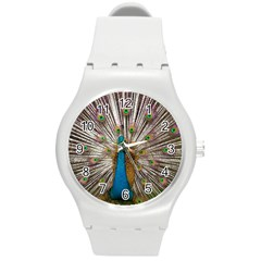 Indian Peacock Plumage Round Plastic Sport Watch (M)
