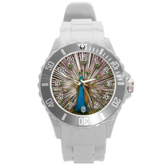 Indian Peacock Plumage Round Plastic Sport Watch (L)