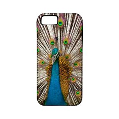 Indian Peacock Plumage Apple iPhone 5 Classic Hardshell Case (PC+Silicone)