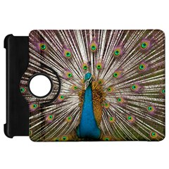Indian Peacock Plumage Kindle Fire Hd 7