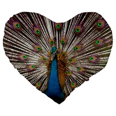 Indian Peacock Plumage Large 19  Premium Heart Shape Cushions