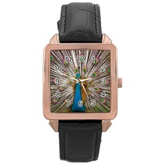 Indian Peacock Plumage Rose Gold Leather Watch