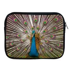Indian Peacock Plumage Apple iPad 2/3/4 Zipper Cases