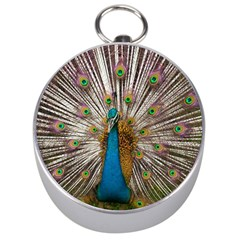 Indian Peacock Plumage Silver Compasses