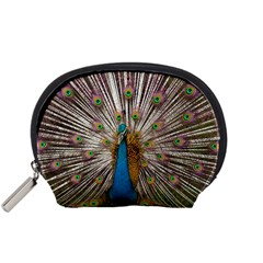 Indian Peacock Plumage Accessory Pouches (small)